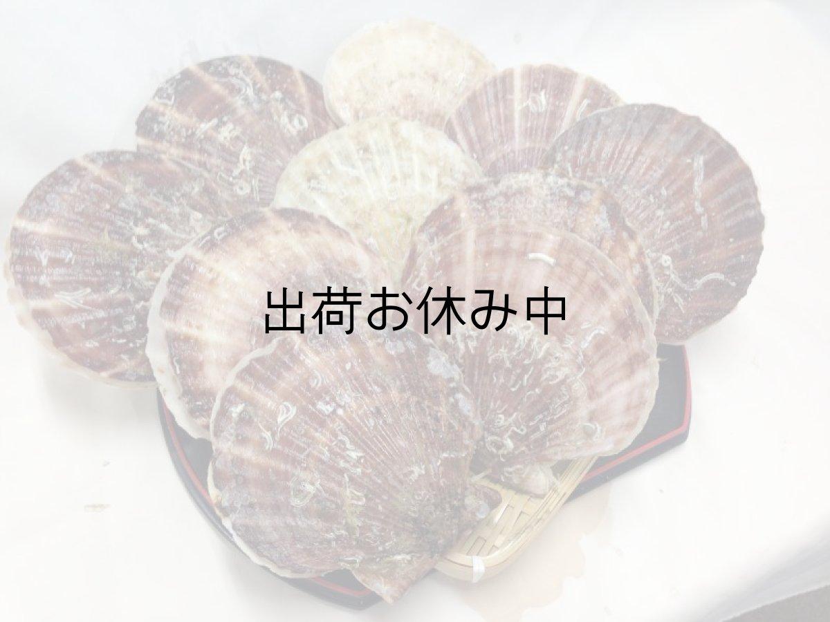 画像1: 三陸山田湾産 殻付ほたて (1)