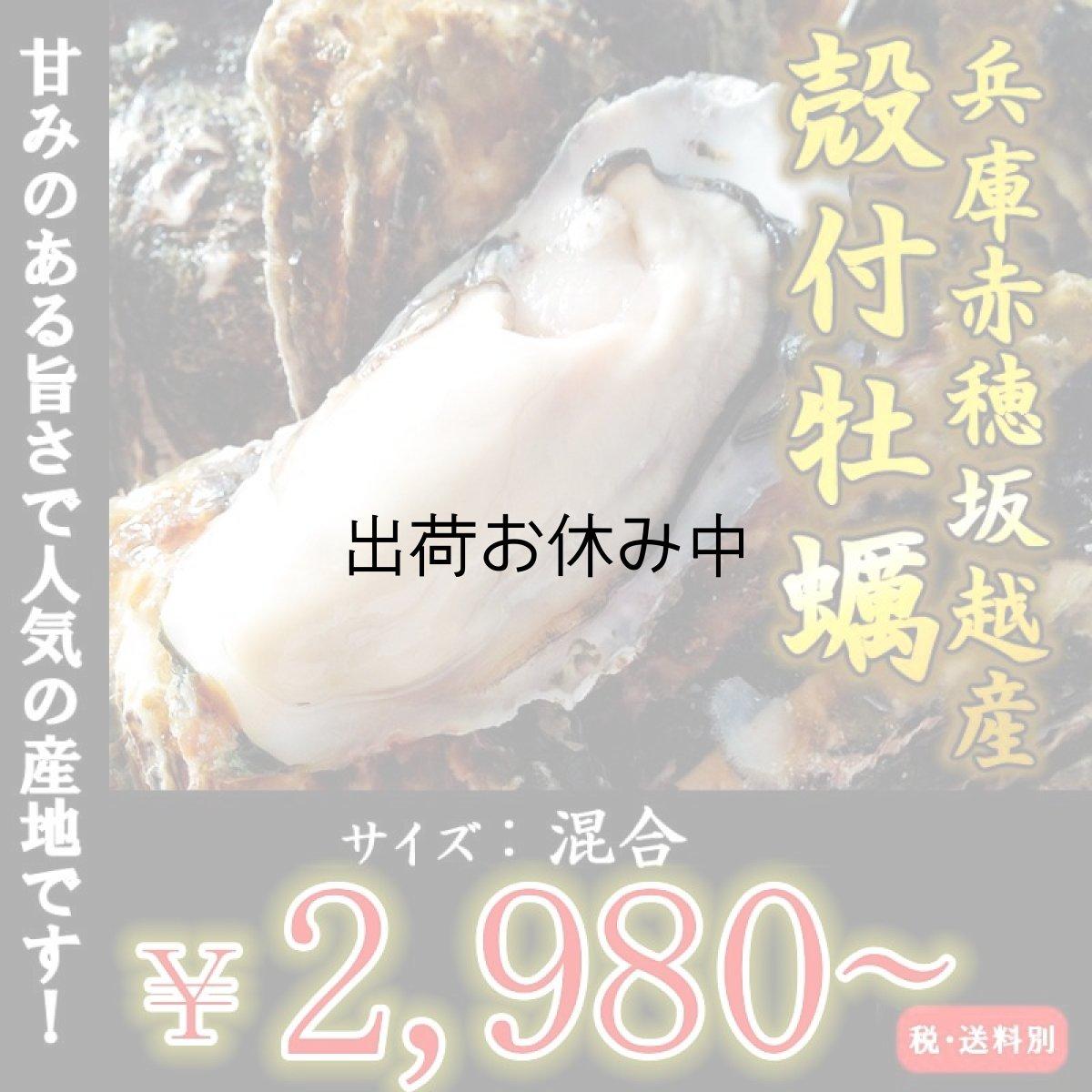 画像1: 【お急ぎ便】兵庫赤穂坂越産 坂越かき (お届け地域限定) (1)