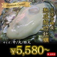 画像1: 三陸赤崎産 殻付熟成牡蠣 (1)