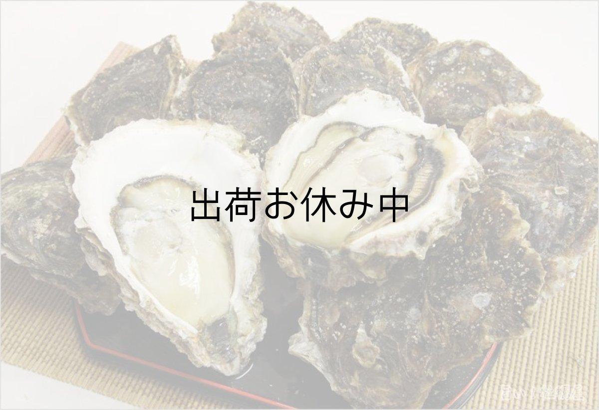 画像1: 三陸 赤崎産 岩牡蠣 (1)