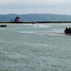 画像9: 北海道厚岸産 丸牡蠣まるえもん (9)