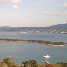 画像10: 熊本天草産 天領岩牡蠣 (10)