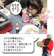 画像3: お急ぎ便 三陸産BBQ殻付牡蠣 (3)