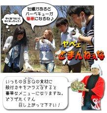 画像4: お急ぎ便 三陸産BBQ殻付牡蠣 (4)