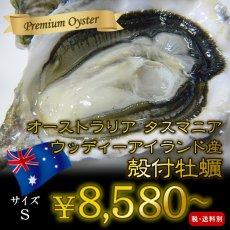 画像1: ウッディアイランド 殻付牡蠣 (1)