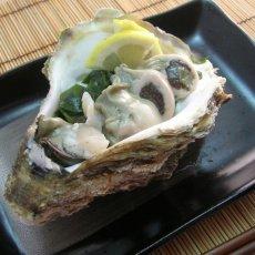 画像5: 秋田八森産 天然岩牡蠣 (5)