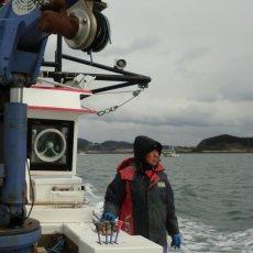 画像6: 三陸広田湾産 レンチン牡蠣 (6)