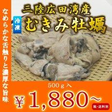 画像1: 三陸広田湾産 冷凍むき身牡蠣 (1)