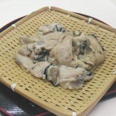 画像3: 三陸広田湾産 冷凍むき身牡蠣 (3)
