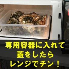 画像5: 三陸広田湾産 レンチン牡蠣 (5)