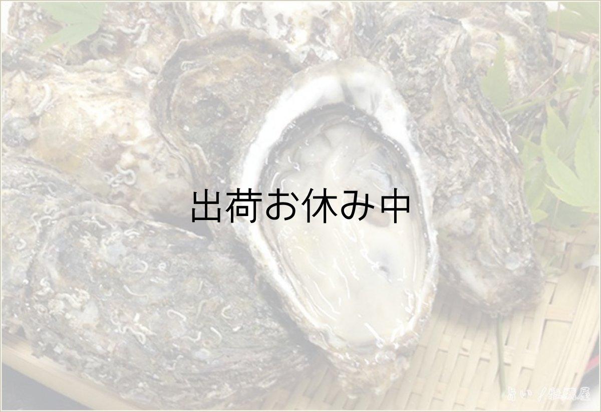 画像1: 広島地御前産 殻付牡蠣 (1)