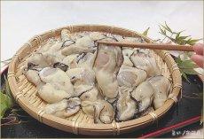 画像2: 広島地御前産 むき身牡蠣 (2)