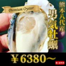 画像1: 熊本八代産 男気牡蠣 (1)