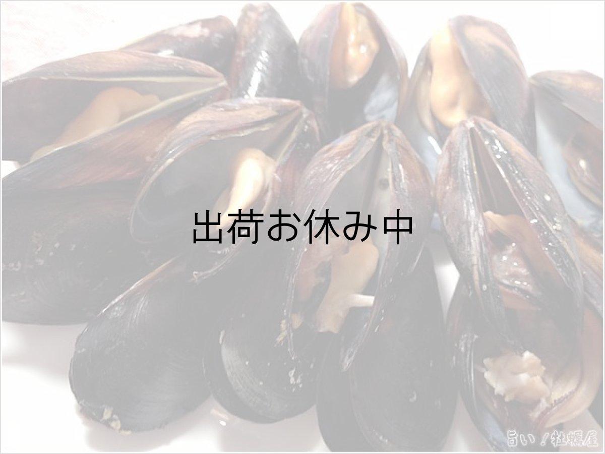 画像1: 三陸唐桑産 ムール貝(活貝) (1)