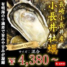 画像1: 長崎小長井産 殻付牡蠣 (1)