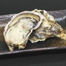 画像5: 大分国東産 殻付牡蠣 (5)