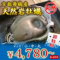 画像1: 京都舞鶴産 天然岩牡蠣 (1)