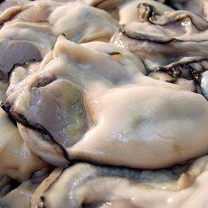 画像3: 的矢湾三ヶ所産 むき身牡蠣 (3)