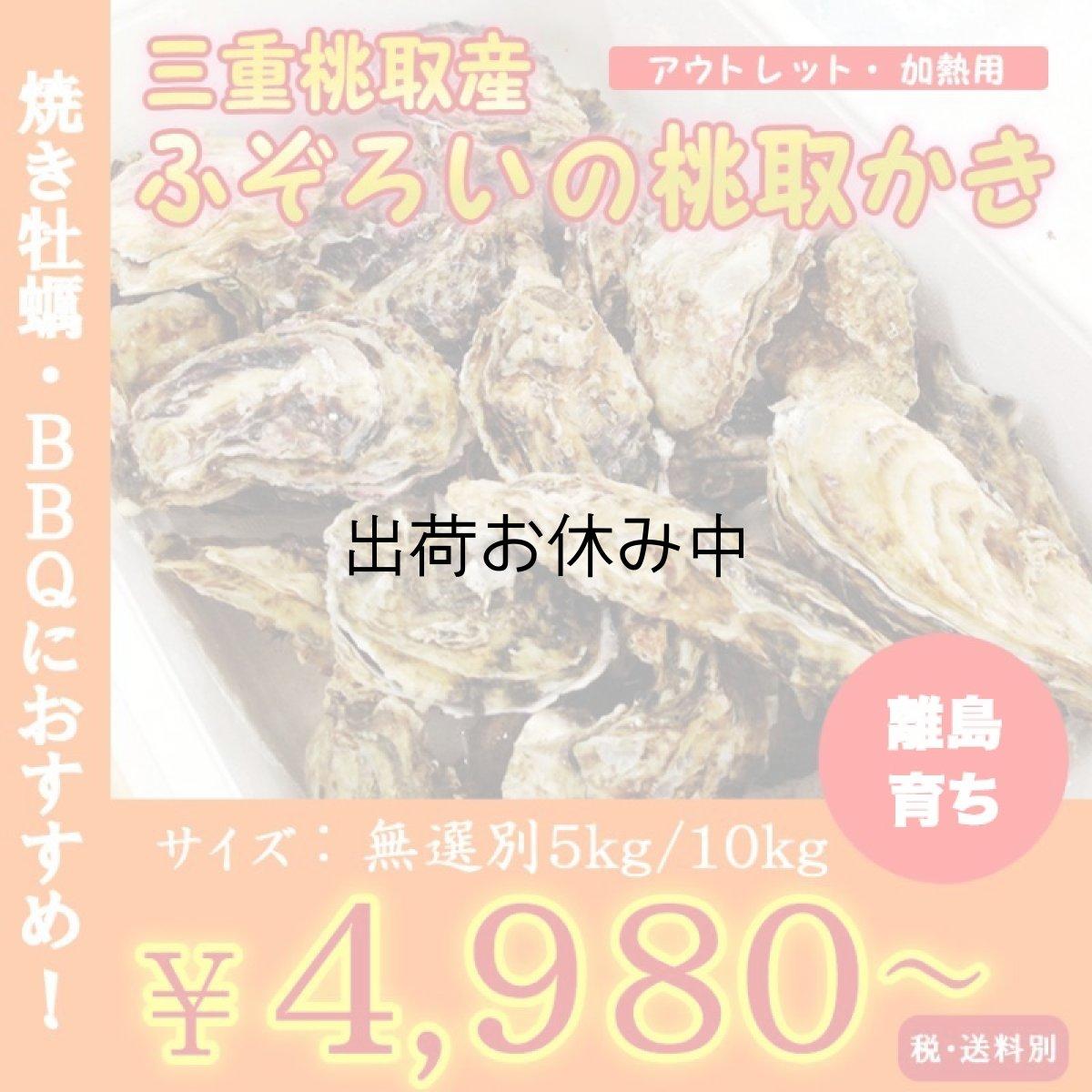 画像1: 【お急ぎ便】三重答志島桃取産 ふぞろい牡蠣 (お届け地域限定) (1)