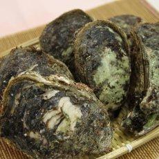 画像8: 石川能登産 天然岩牡蠣 (8)