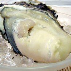 画像3: 福井小浜産 天然岩牡蠣 (3)