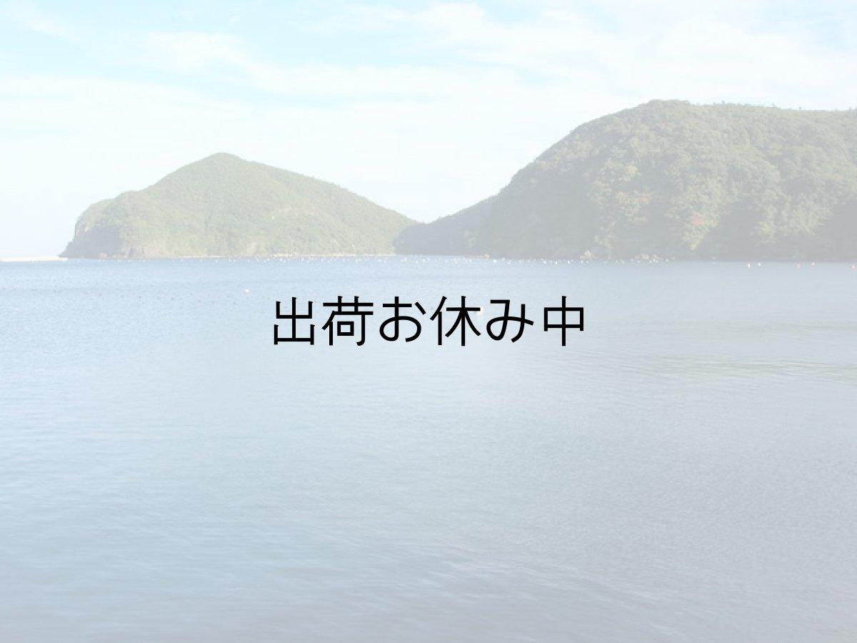 画像1: 島根隠岐産 岩牡蠣 (1)
