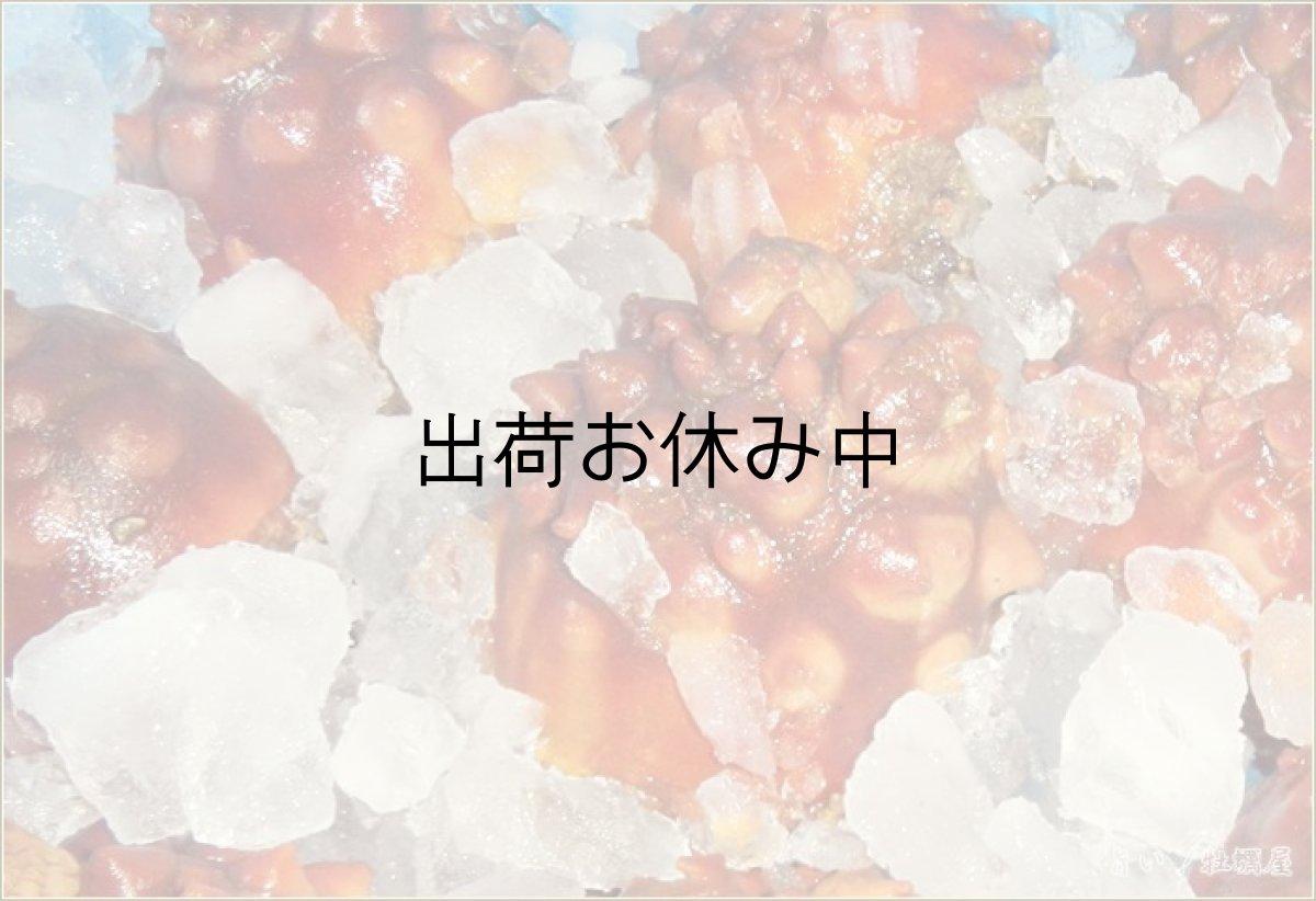 画像1: 三陸産 ホヤ (1)