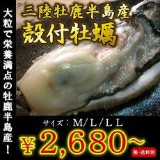 画像1: お急ぎ便 三陸産殻付牡蠣 (1)