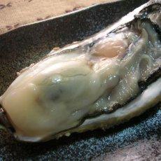 画像7: お急ぎ便 三陸産殻付牡蠣 (7)