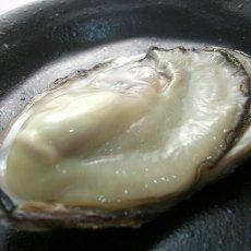 画像3: 三重白石湖産 牡蠣 渡利かき (3)