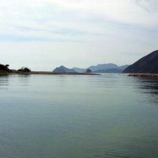 画像8: 三重白石湖産 牡蠣 渡利かき (8)