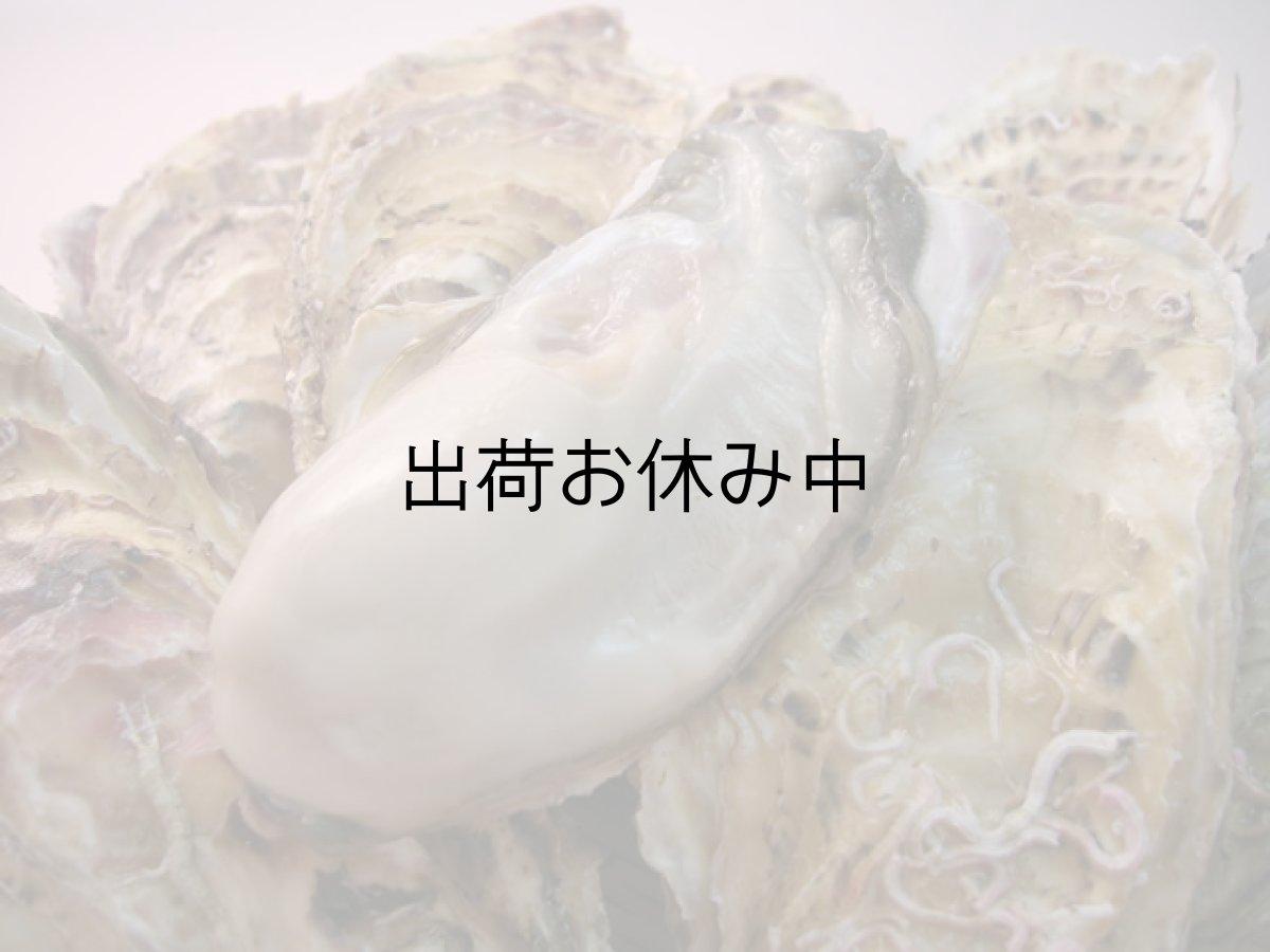 画像1: 北海道寿都産 殻付牡蠣 寿牡蠣 (1)