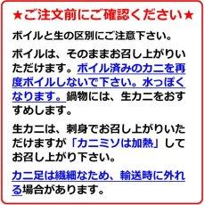 画像10: 鳥取産 松葉かに (10)