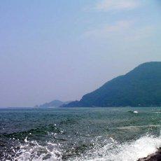 画像10: 鳥取産 天然岩牡蠣「夏輝」 (10)