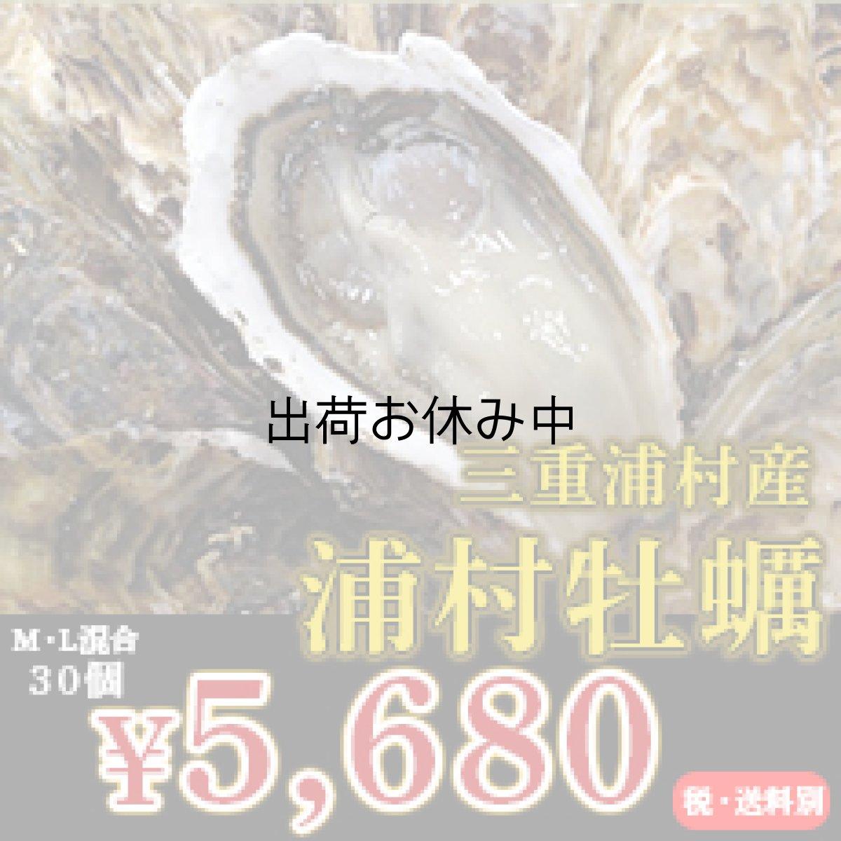 画像1: 三重浦村産 殻付牡蠣 浦村かき (1)