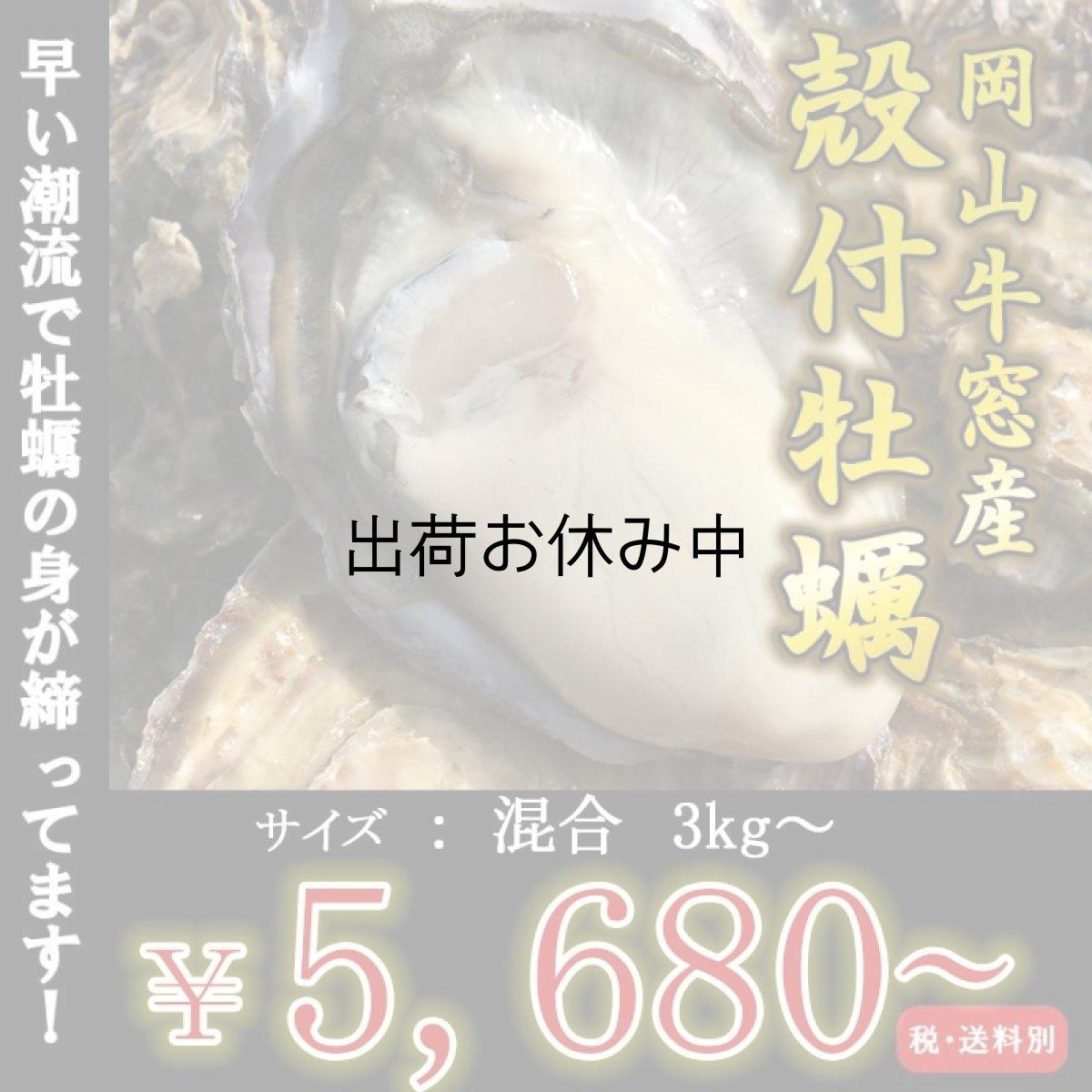 画像1: 岡山牛窓産 殻付牡蠣 (1)