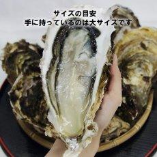 画像5: 【お急ぎ便】三陸山田湾産 殻付牡蠣 (お届け地域限定) (5)