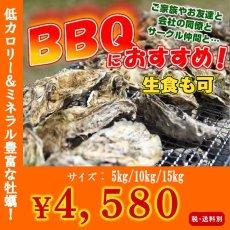 画像1: 三陸山田湾産 バーベキュー用ふぞろい殻付牡蠣 (1)