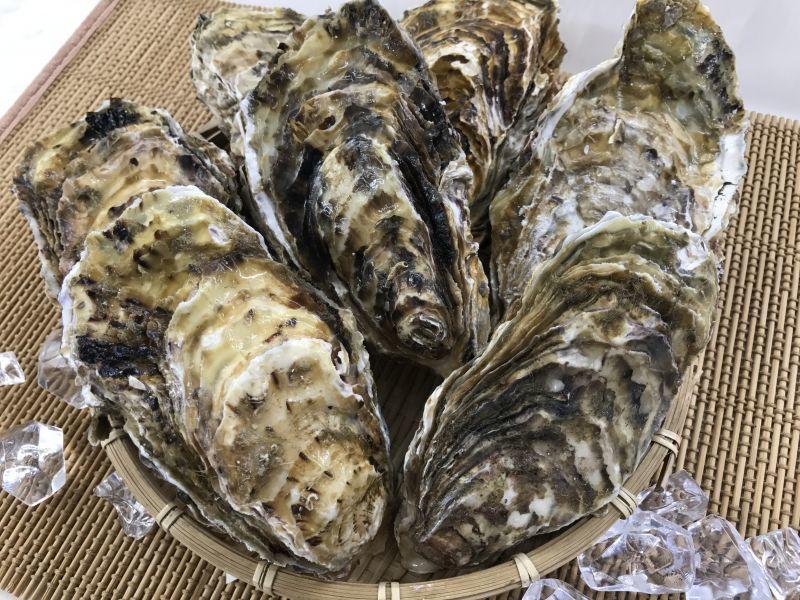 【牡蠣の安全】牡蠣が生きていれば消費期限過ぎてても食べられる?