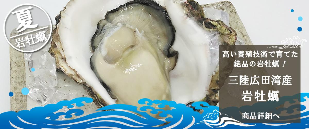 三陸広田湾産 岩牡蠣 商品詳細ページへ