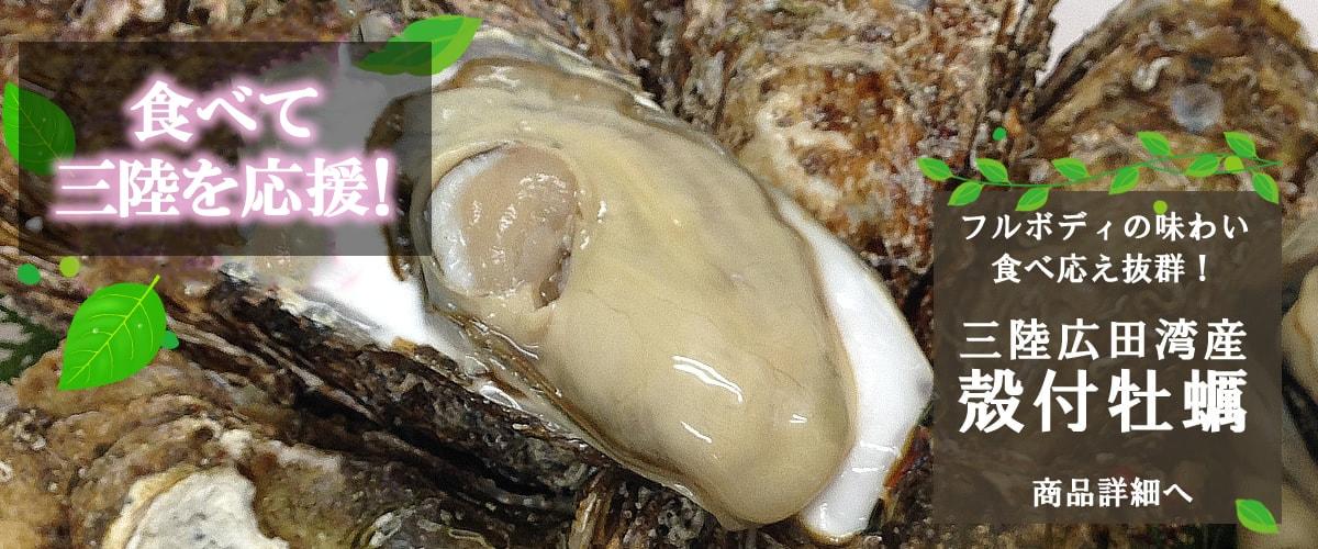 三陸広田湾産 殻付牡蠣 商品詳細