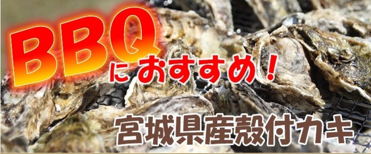 三陸志津川産バーベキュー牡蠣