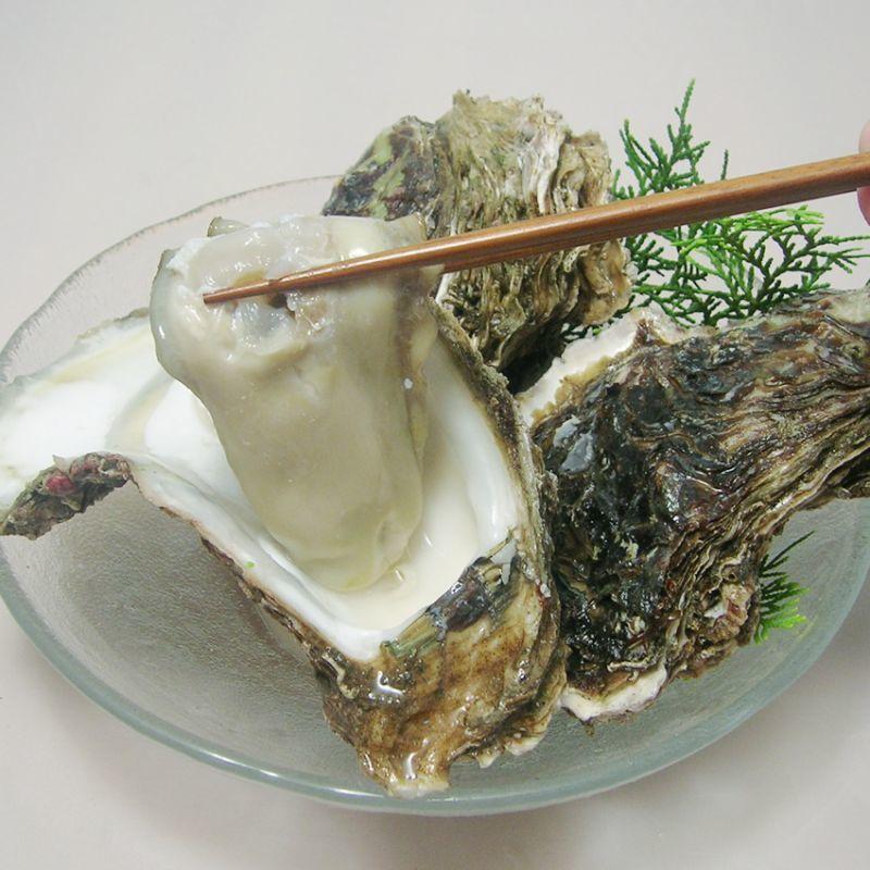 【牡蠣の?】花粉症対策にも牡蠣がおすすめです