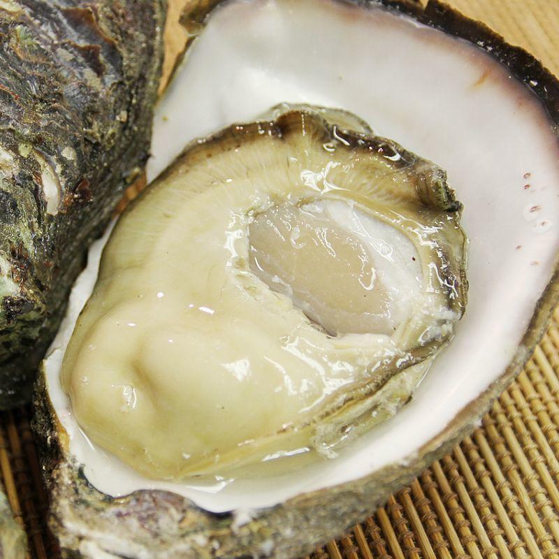 【牡蠣の?】岩牡蠣のシーズンイン