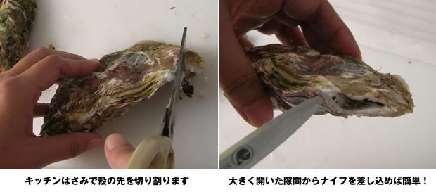 殻付き牡蠣剥き方