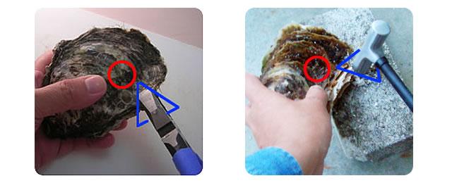 岩牡蠣の剥き方