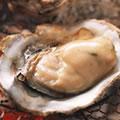 <殻付牡蠣のレシピ>焼き牡蠣