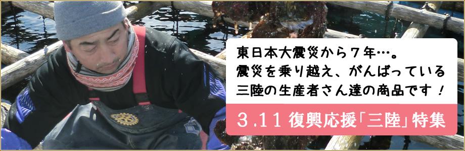 3.11復興応援 三陸特集