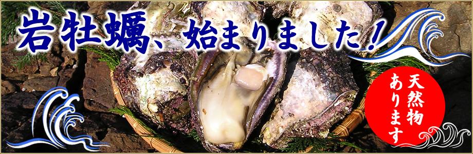 岩牡蠣特集