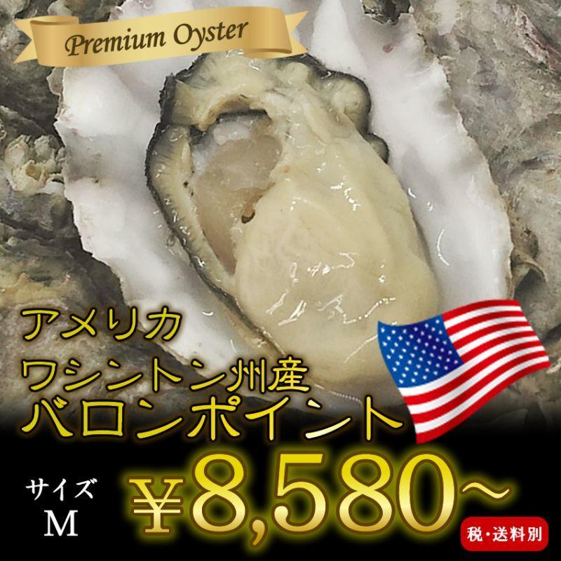 画像1: 北米バロンポイント 殻付牡蠣 (1)